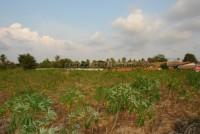 Land Pong  61711
