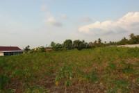 Land Pong  61712