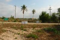 Land Pong  61845