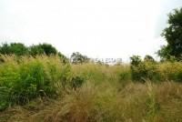 Land Soi Nongkabok 6803