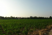 Land Tung Klomman 67991