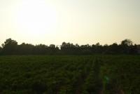 Land Tung Klomman 67994