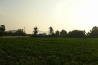Land Tung Klomman 67995