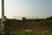 Land at Mabprachan  53485