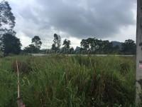 Land beside Nong Nuch 7937