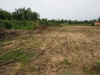 Land for sale in Pong 91485