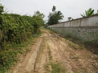 Land for sale in Pong 91486