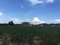Land in Bang Saray
