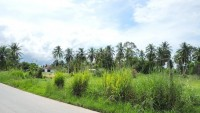 Land in Huay Yai Land For Sale in  East Pattaya