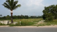 Land near Elephant Farm Land For Sale in  East Pattaya