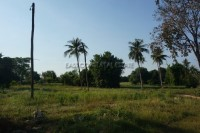 Nong Mai Kaen Land For Sale in  East Pattaya