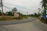 Nongplalai  59351