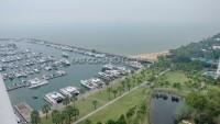 Ocean Marina 101449