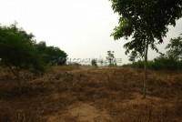 Ocean View Land Plot 66942