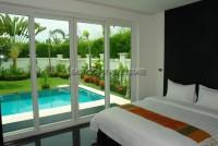 Palm Oasis 57522