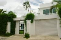 Palm Oasis 575222