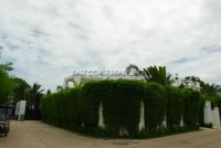 Palm Oasis 575223