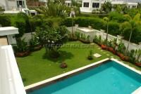 Palm Oasis 57527