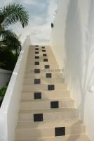 Palm Oasis 665723