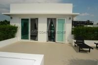 Palm Oasis 665724