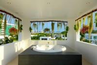 Palm Oasis 80601