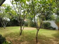 Panalee Village Huay Yai  85789