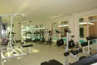 Paradise Park 52952