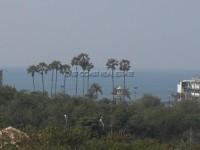 Paradise Park 60646