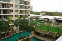 Paradise Park  529116