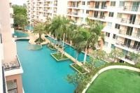 Paradise Park  529319