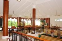 Paradise Villa 1 55785