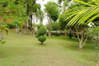Paradise Villa 1 557852