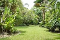 Paradise Villa 1 856781