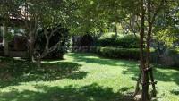 Paradise Villa 2 67413