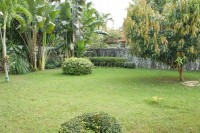Paradise Villa 2 902214