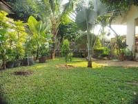 Paradise Villa 3 1022312