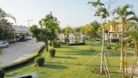 Patta Village 773915