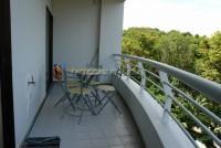 Pattaya Hill 565615