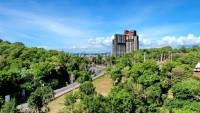 Pattaya Hill 966311