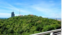 Pattaya Hill 96648