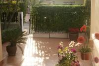 Pattaya Tropical 91108