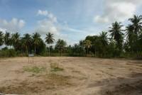 Pong Land 6546