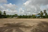 Pong Land 65464