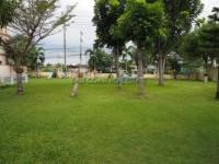 SP2 Village 802921