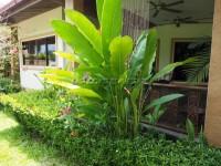 SP2 Village 82445