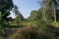 Takien Tia land For Sale in  East Pattaya