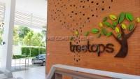 Treetops 868347