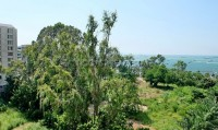View Talay 6 99541