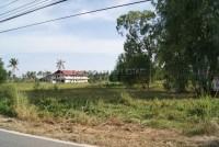 Wat Yaan 90462