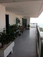 Wongamat Garden Beach 56571